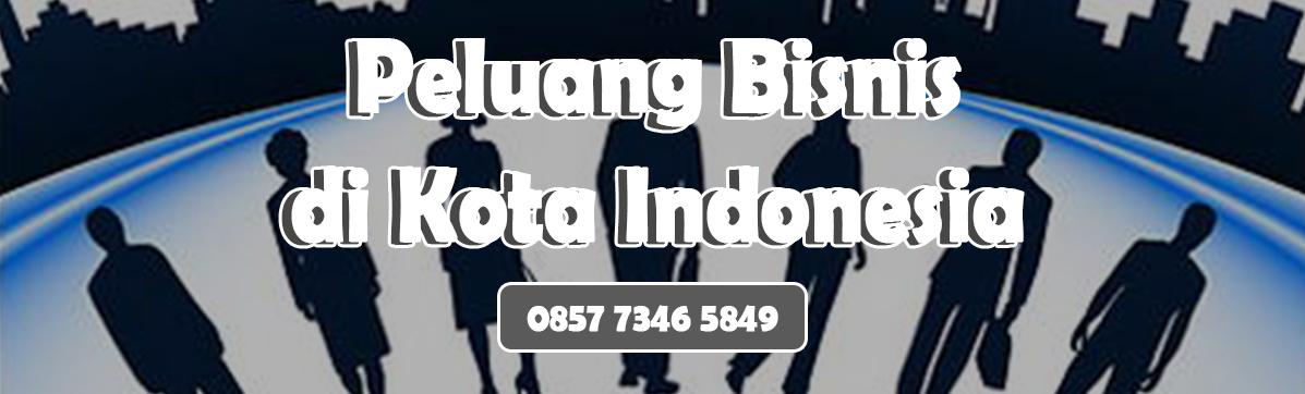 PELUANG BISNIS DI KOTA KECIL INDONESIA
